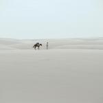 白砂の砂漠を歩く、レンソイス縦断トレッキング