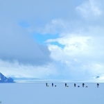 氷河の成り立ちを辿る壮大なトレッキング:パタゴニア氷原