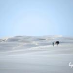 レンソイス砂漠を3日間歩く:縦走トレッキング