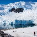 南極・ネコハーバーの展望の丘と、ペンギンの営み