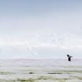 """丘の上から望む南極の絶景と、雪の華""""氷雪藻"""""""