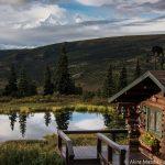 アラスカ・デナリ国立公園の最深部に滞在:キャンプ・デナリ