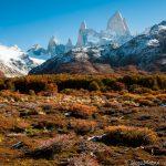 秋のパタゴニア:紅葉に染まる南極ブナの森と暴風