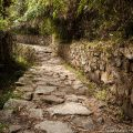 ペルー・インカトレイル・トレッキング1日目:マチュピチュ遺跡へ