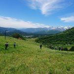 《国内企画:信州①》水芭蕉フラワーハイキングと「わらび狩り」2日間