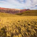 虹の渓谷「ウマワカ渓谷」4つの魅力:アルゼンチン北部サルタ地方