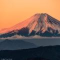 フォトギャラリー:日本