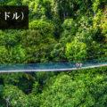 エクアドル・アマゾン:ジャングルロッジ滞在