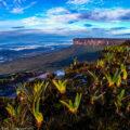 ギアナ高地/「南米大陸の幻想風景」写真展:撮影エリア紹介⑦