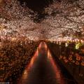Akira Matsui Foto Tours & Guía Privado en Japón