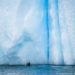 ルメール海峡を抜けて:氷塊の楽園に遊ぶアザラシ