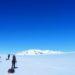 パタゴニア南部氷床:氷河昆虫