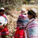 アンデスの多彩な民族衣装:ペルー・ケチュア族とインカ文明