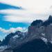 パタゴニアとアンデス高原を舞う巨鳥・コンドルの生態